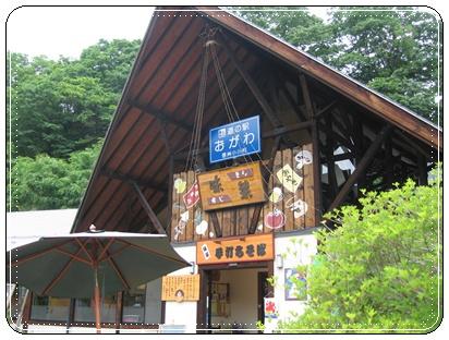 2010-6-19-1.JPG