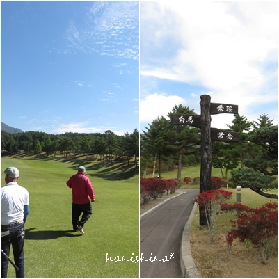 golf002.jpg