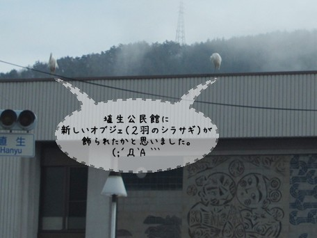 k-IMG_2335.JPG