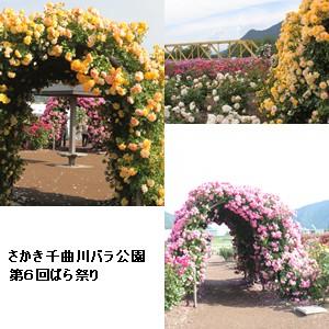 k-sakaki-3.jpg
