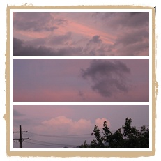 2010-6-21-3.jpg